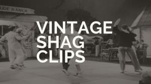 Vintage Shag Clips