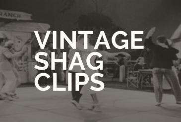 Inspiring Vintage Shag Clips